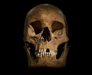 Richard III Skull