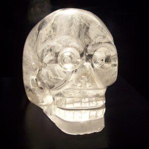 paris-skull